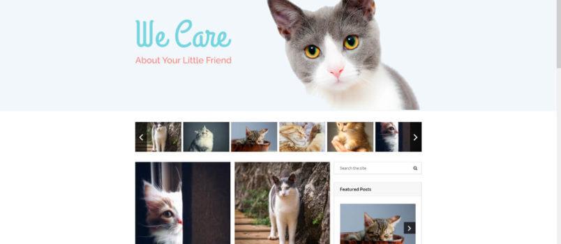 Die besten WordPress-Blog-Themes im Überblick.